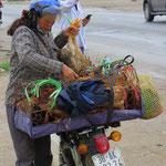 Der Umgang mit Tieren ist in Vietnam speziell.