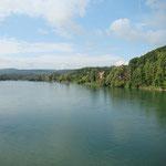 die Aare kurz vor der Mündung in den Rhein
