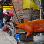 An vielen Strassenständen werden ganze grillierte Schweine angeboten.
