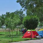 Die Iraner lieben das Picknicken. Grosse Parkanlagen am Stadtrand sind eigens dafür angelegt.