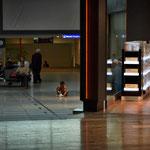 Beim Umsteigen in Istanbul. Dieser Kleine spielt in aller Seelenruhe inmitten der Abflugshalle. Inspirierend.