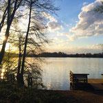 Die Sechs-Seen-Platte in Duisburg.