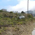 Scendendo ad Agios Nikolaos
