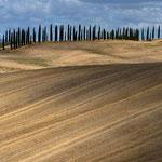 Collone senesi: Monteroni d' Arbia
