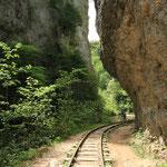Узкоколейка в Гуамском ущелье
