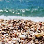 Ракушечный пляж на косе около Кояшского озера