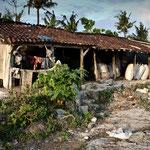 Seaweed Village home