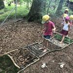 Wir bauen einen Fühlweg am Steinberg