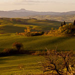 Val d'Orcia - San Quirico - Belvedere