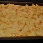 Mit Schmand, Äpfeln, Zimt und Zucker belegen