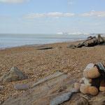 Am Strand....