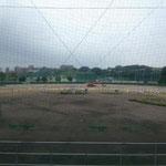 6月15日 芝作業開始