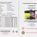 Programmhelft Landesliga Süd 2011 - Vorderseite & Tabelle