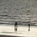 Sur la plage de Trouville
