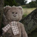 """Ausreißbär! Nach langem Rufen und suchen, wurde er aufgespürt. Im Baum. """"Nur mal nucken"""" wollte er dort!"""