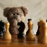 """Der Schachgroßmeister sagt: """"Du bist dran - zieh""""."""