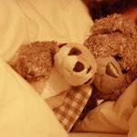Schon gewusst? Echte Kuschelkerle - wie Herr Nopf - schlafen mit offenen Augen. Und warum das? Immerhin sind sie des nachts die Bewacher der Träume aller um sie Rumliegenden...jaja.