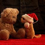 """""""Du bist gar nicht der Nikolaus"""" waren die leisen Worte von Herrn Nopf...ob er Recht hat?"""