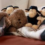 """""""Nann nich schlafen, die zählen so laut, die Schafe"""" - schlafloser, armer Herr Nopf."""