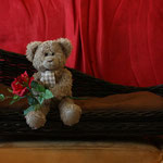 Herzallerliebst, der kleine Rosenkavalier...für wen die Rose wohl gedacht ist?