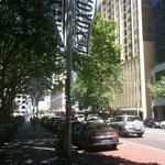 Sydney xx