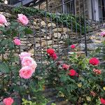 Der Treppenaufgang bei der Terrasse