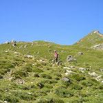 Spaziergänge, Wandern, Radfahren oder Mountenbiken. ALLES IST MÖGLICH.