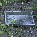 'Vlieg' bluestone, 8x12cm, 2003                                                 €    300
