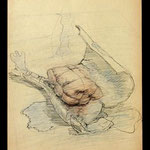 n.t. col.penc./pencil/ink,  signed 1972, 28,2x20,8,  €   800