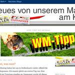 Konzeption eines Blogs anlässlich der WM 2010