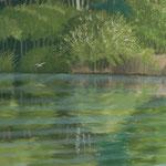 Möwe und Ufer mit Spiegelung