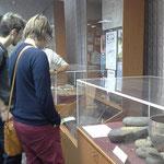 Экскурсия в Музей археологии и этнографии ТюмГУ; археологический зал