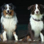 Djego und Bailey