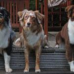 Unsere 3 auf der Veranda von unserem Ferienhaus