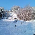 Winterimpressionen2010