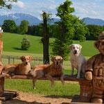 Pauli mit seinen Freunden :-)