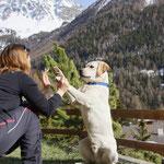 """Wem ein Hund einmal sein Herz geschenkt hat, der hat einen Freund für`s Leben gefunden"""""""