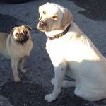 Emma mit Freund Charly