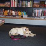 ... in einer Buchhandlung
