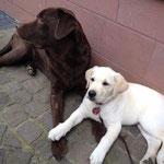 Milka und Emma