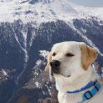 Moony macht Urlaub in der Schweiz
