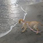 Nele macht Urlaub auf ihrer künftigen Lieblingsinsel! :-)