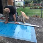 Lotti hilft wo sie kann - oder wer stört bei der Arbeit :-)