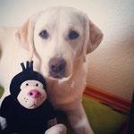 Holly mit Geburtstagsgeschenk :-)