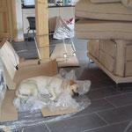 Casper total entspannt