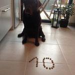 Nali feiert ihren 10. Geburtstag