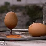 Am Äquator steht ein Ei sogar auf einem Nagel