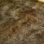 Abrigo de piel y pluma de pelícano