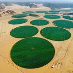 Irrigation sur pivot dans le désert de Jordanie. Source : http://www.astrosurf.com/luxorion/eau-exploitation3.htm
