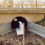 Un crapauduc (permet le passages des amphibiens sous une route) en Allemagne. Source: wikipédia.